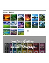 Prestashop Picasa Responsive Web Picture Gallery